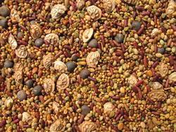 KORIDOR bylinná rekultivační směs, 1 kg - 3