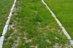RSM 5.1 štěrkový trávník s řebříčkem *Cena GRAND PRIX - 4